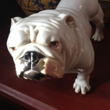 Nymphenburg bulldog