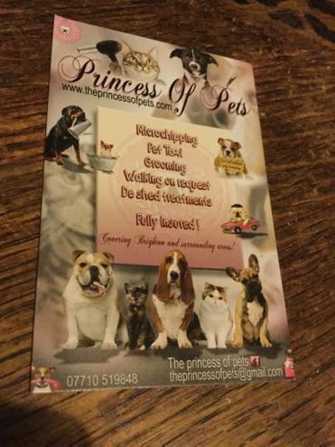 Princess Winters biz card