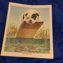 Splash bulldog print