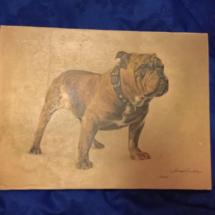 Mack The Dog