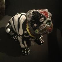 Arty Bulldog 6