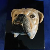 3D bully head