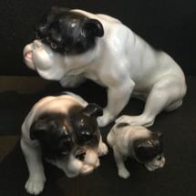 Elphina bulldogs