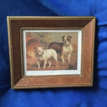 Stunning Bulldog Painting