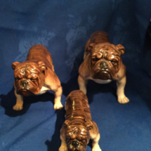 Doulton Set of Brindle bulldogs