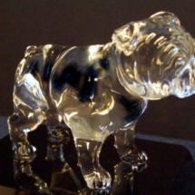 Indulgent glass bulldog