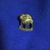 Mack tie pin