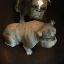 Rare goldshielder bulldog figurines
