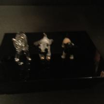 Comical miniature bulldogs