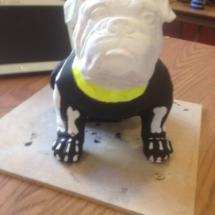 Arty Bulldog 8