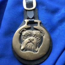 Bulldog horse brass