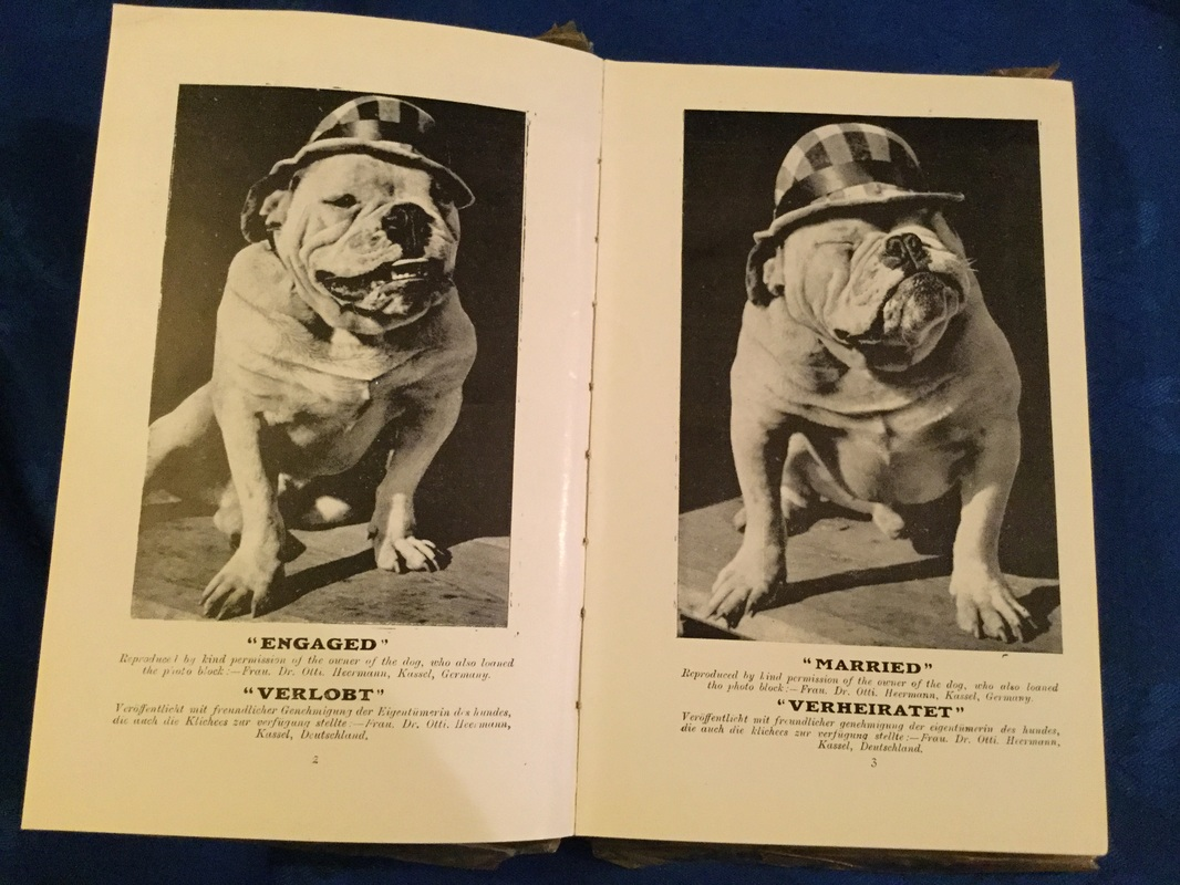 Vintage 1930s bulldog book