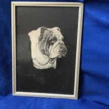 Black And White Bulldog Painting
