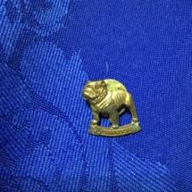 mack truck tie pin