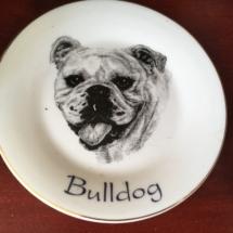 Nice bulldog plate