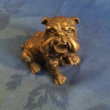 French bronze bulldog 1