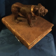 Bulldog on a book