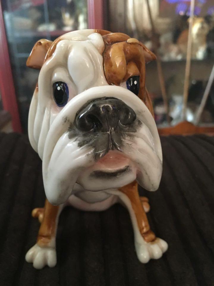 Comical bulldog courtesy of collectibulldogs
