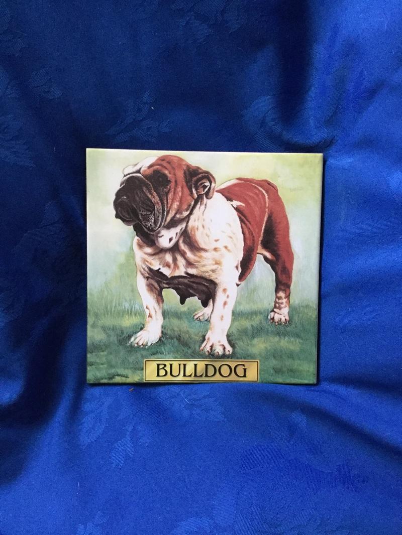 Vintage bulldog tile