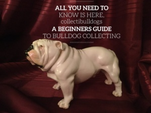 Learn How To Collect – FREE Ebook