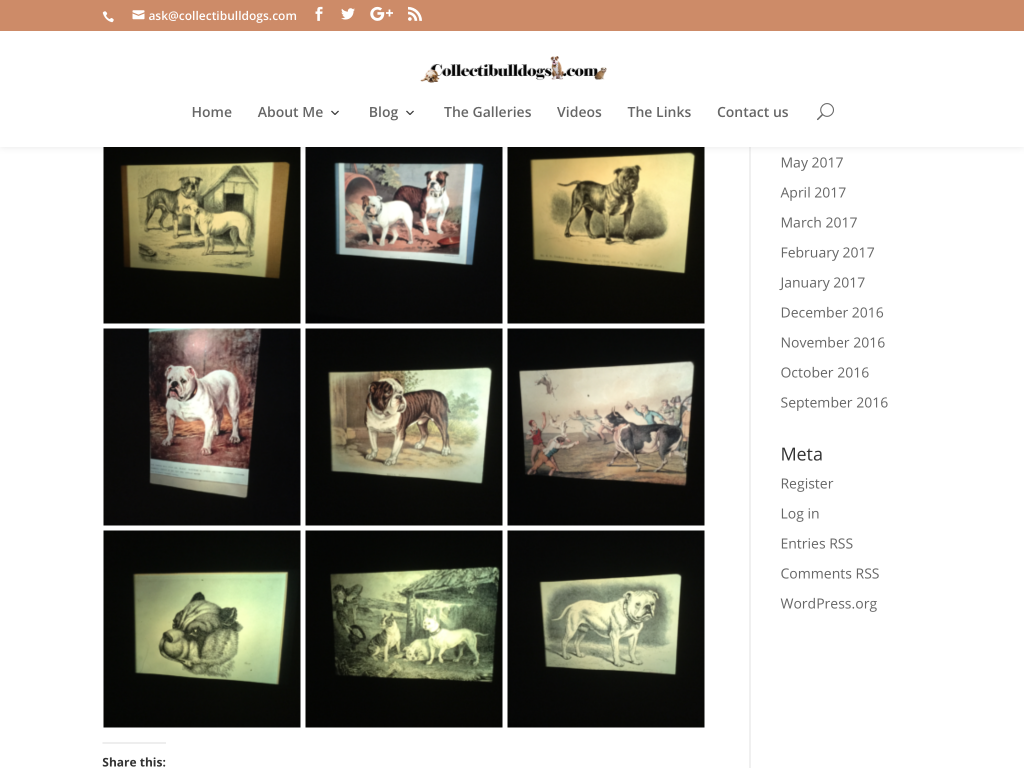 Bulldog history or profit