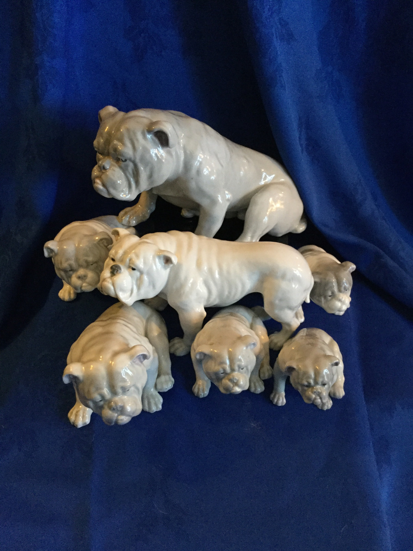 Bulldog collectors