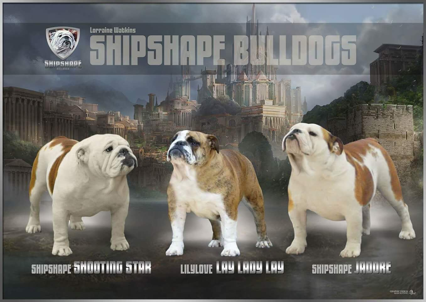 Collectibulldogs.com