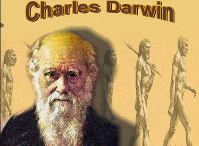 Darwin animal welfare advocate
